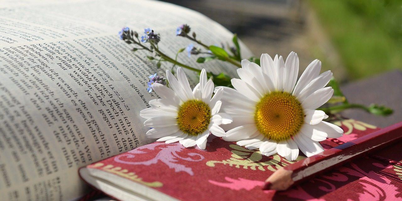 LEÇON N°1 – LA DOCTRINE BIBLIQUE